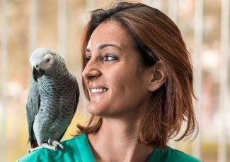 young-happy-veterinarian-with-a-parrot-on-her-shoulder